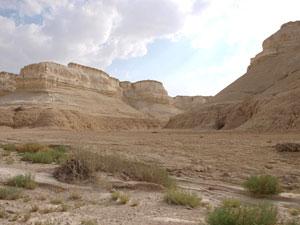 desierto-de-judea